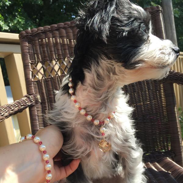 luxury dog necklace