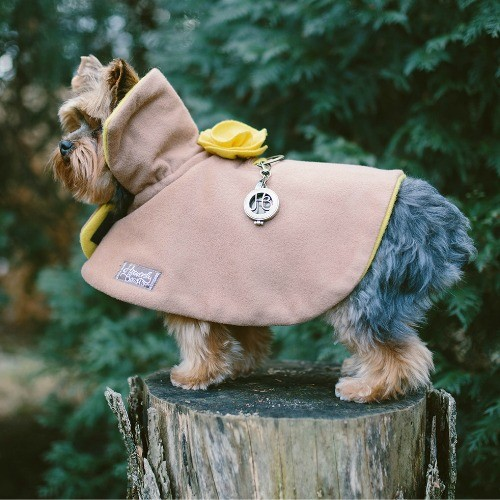 dog fashion. a stylish wool cape for dogs
