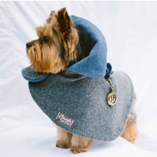 dog fashion. stylish grey and blue wool cape for dogs