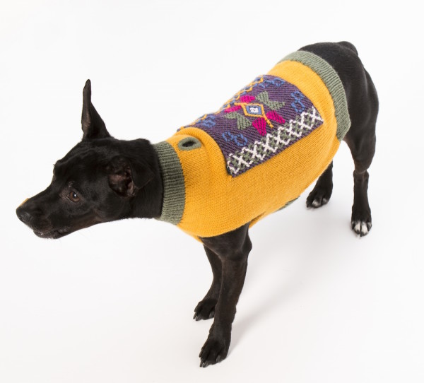 gorgeous knit dog sweater inspired by and made in Bhutan