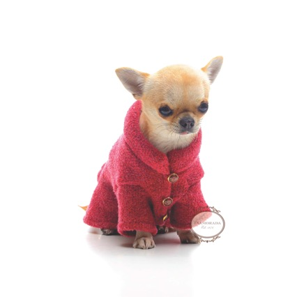 beautiful designer wool dog coat