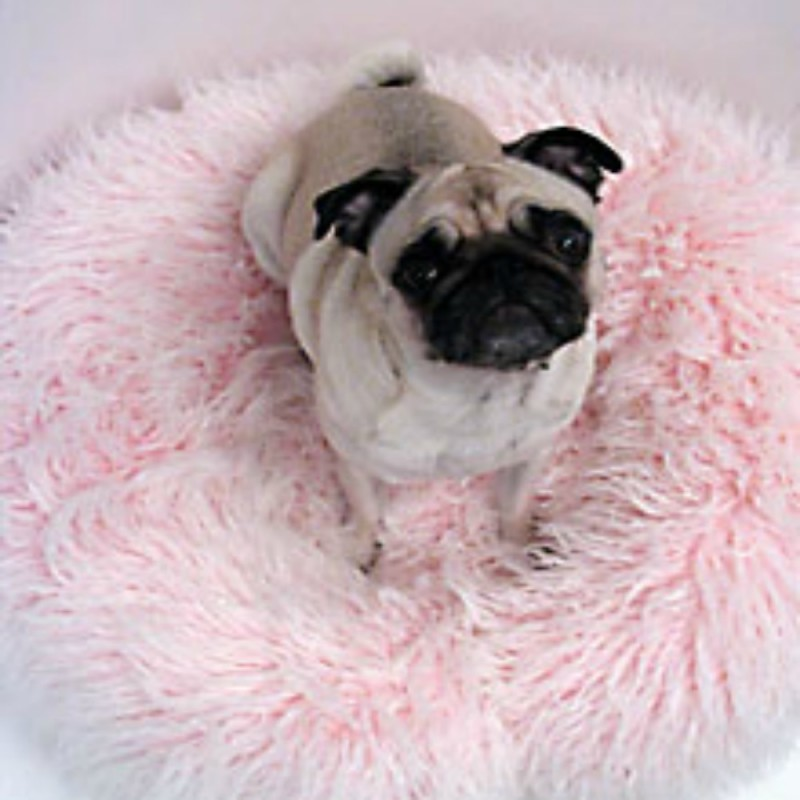 Gorgeous custom dog beds for any size dog