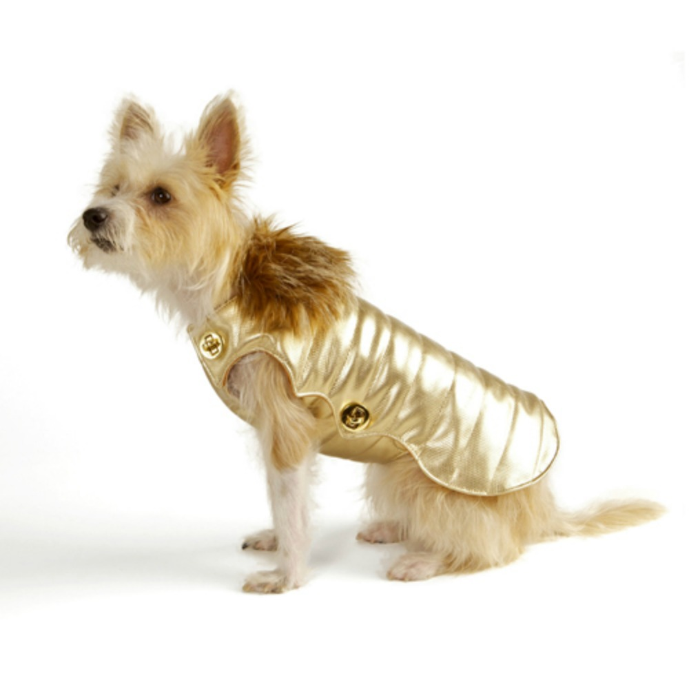 designer, cruelty-free waterproof dog coat