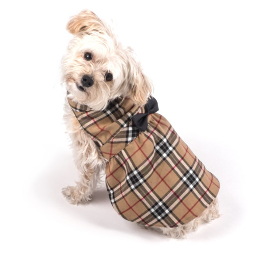 Dog fashion for fall: Plaid Alert!