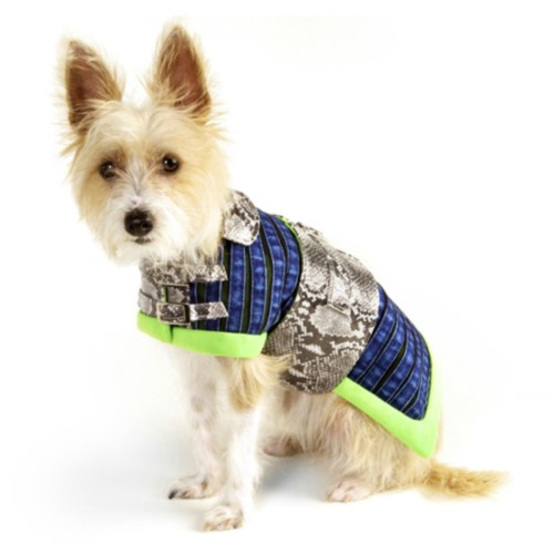designer, cruelty-free waterproof dog coat