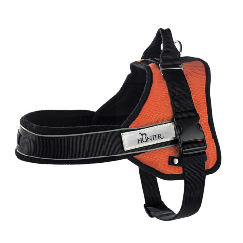 designer dog harness for large and small dogs