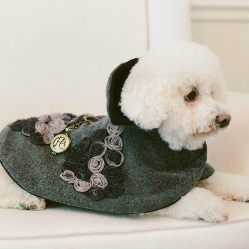 designer dog fashion; grey cashmere and rosettes cape.