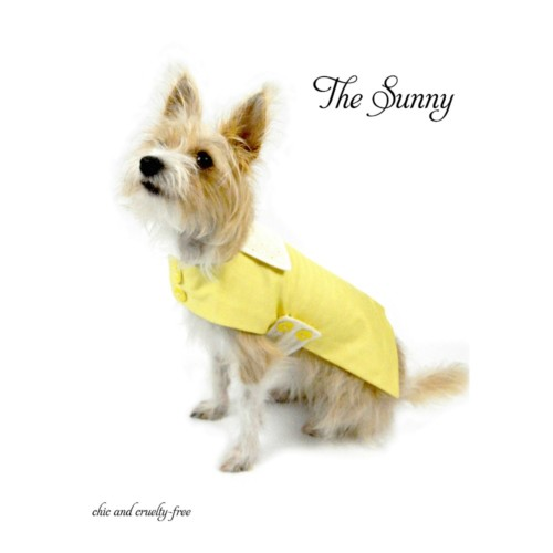 A bright yellow organic cotton dog coat with white eyelet lace accents by Couture by Sophie