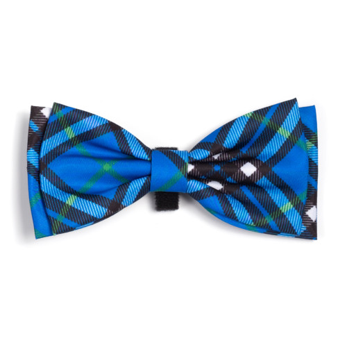 the latest spring fashion trends for your dog. Bright blue plaid bow tie.