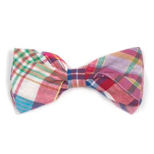 the latest spring fashion trends for your dog. Bright Madras bow tie.
